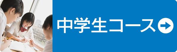 TESTEA(テスティー)中学生コース