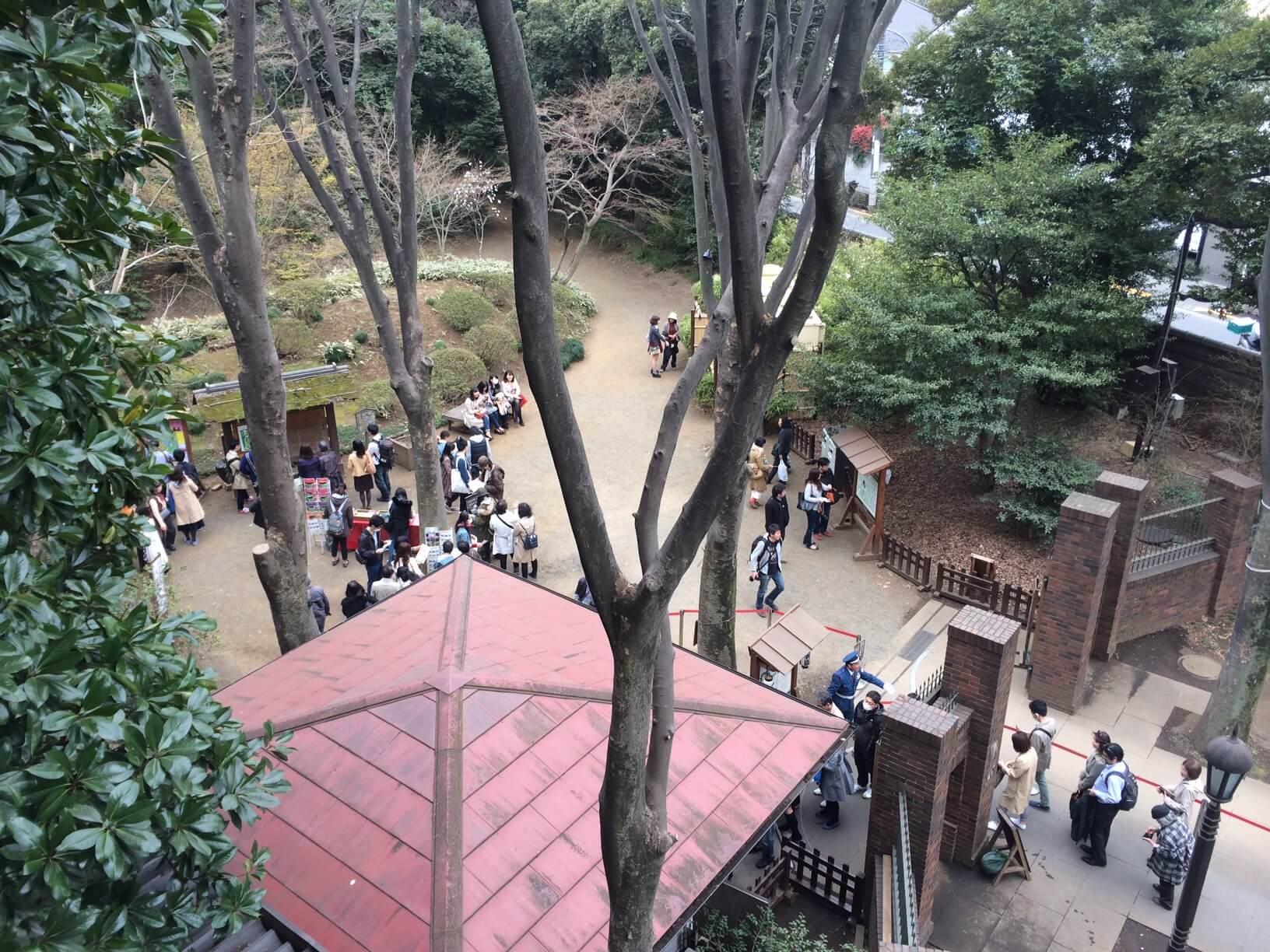 六義園の桜と受験勉強