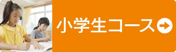 TESTEA(テスティー)小学生コース